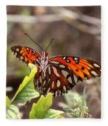 4529 - Butterfly Fleece Blanket