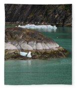 Alaska_00047 Fleece Blanket