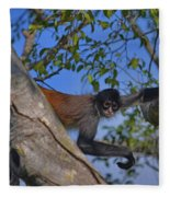 48- Capuchin Monkey Fleece Blanket