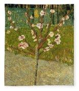 Almond Tree In Blossom Fleece Blanket