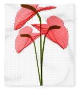 Anthurium Flowers, X-ray Fleece Blanket
