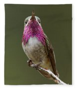 Calliope Hummingbird Fleece Blanket