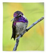 Costas Hummingbird  Fleece Blanket