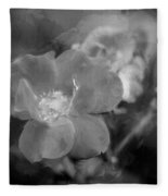 Knockout Roses Painted Bw Fleece Blanket