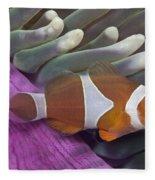 Malaysia, Marine Life Fleece Blanket