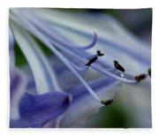 Royal Botanical Garden Of Madrid Fleece Blanket