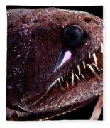 Threadfin Dragonfish Fleece Blanket