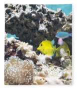 Tropical Fish Fleece Blanket