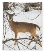 White-tailed Deer Fleece Blanket