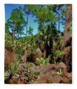 55- Everglades Afternoon Fleece Blanket
