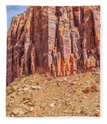 Views Of Canyonlands National Park Fleece Blanket