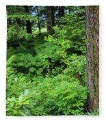 Alaska_00006 Fleece Blanket