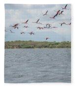 Colombia Sanctuary Of Flamingos Near Riohacha Fleece Blanket