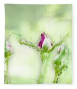 Red Rose Bud Fleece Blanket