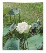 White Lotus Flower Flower Lotus Nature Summer Green Plant Blossom Asian Fleece Blanket