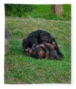 69- Monkey Business Fleece Blanket