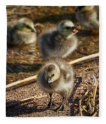 Barnacle Goose Fleece Blanket