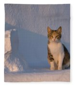 Cat On A Greek Island Fleece Blanket
