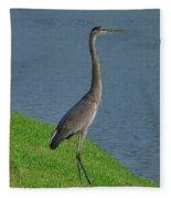 7- Great Blue Heron Fleece Blanket