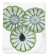 Opium Poppy Pods, X-ray Fleece Blanket