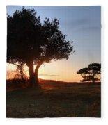 New Forest - England Fleece Blanket