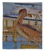 8- Brown Pelican Fleece Blanket