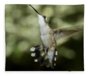 Female Ruby-throated Hummingbird Fleece Blanket