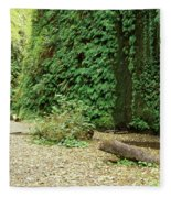 Fern Canyon Fleece Blanket