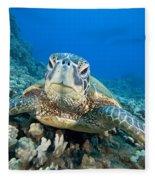 Hawaii, Green Sea Turtle Fleece Blanket