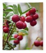 Lingonberry Fleece Blanket