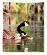 8137 - Canada Goose Fleece Blanket