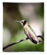 8181-001 - Ruby-throated Hummingbird Fleece Blanket