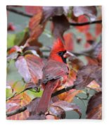 8623-001 - Northern Cardinal Fleece Blanket