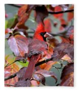 8624-001 - Northern Cardinal Fleece Blanket