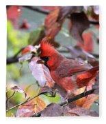 8627-002 - Northern Cardinal Fleece Blanket