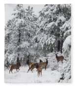 Elk In Deep Snow In The Pike National Forest Fleece Blanket