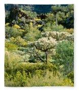 Saguaro Cactus Carnegiea Gigantea Fleece Blanket
