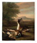 Two Drakes In Landscape Fleece Blanket