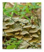 Polypores 9155 Fleece Blanket