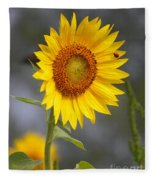 #933 D958 Best Of Friends Colby Farm Sunflowers Newbury Massachusetts Fleece Blanket