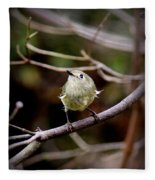 9343-00-ruby-crowned Kinglet Fleece Blanket