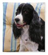 #940 D1043  Farmer Browns Springer Spaniel Smile Hidden Heart Fleece Blanket