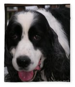 #940 D1049 Farmer Browns Springer Spaniel Fleece Blanket