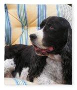 #940 D1054 Farmer Browns Springer Spaniel Fleece Blanket