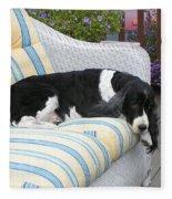 #940 D1061 Farmer Browns Springer Spaniel Fleece Blanket