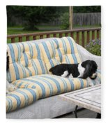 #940 D1094 Farmer Browns Springer Spaniel Together Fleece Blanket