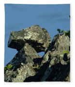 A Balancing Rock  Fleece Blanket