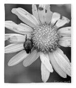 A Beetle And A Daisy  Fleece Blanket