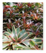 A Bevy Of Bromeliads Fleece Blanket