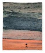 A Bird's Eye View Fleece Blanket